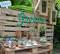 Picnic es celebrado con éxito en el Jardín Botánico